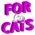 3D text with cat on white background. Home pet.