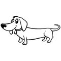 Dachshund Cartoon Illustration