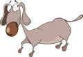 The dachshund cartoon long grey rate with a brown nose Stock Photography