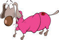The dachshund in a coat cartoon long rate pink clothes Stock Image