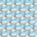 Dachshund cute dog stripe pattern Royalty Free Stock Photo