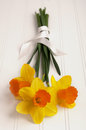 Daffodil Bouquet wrapped in Ribbon on Wood Stock Photography