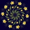Daffodil floral medallion pattern, vector mandala ornament. Fashion style for prints, silk textile, cushion pillow, kerchief. Flor