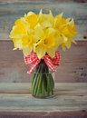 Daffodils In Glass Vase