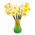 Daffodils in vase Stock Photography