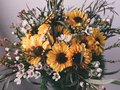 Dainty flower arrangement by me Stock Images
