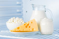 Dairy produce tasty healthy products in the refrigerator sour cream in the bank cottage cheese in bowl cheese and milk in a jar Royalty Free Stock Image
