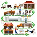 The dairy supply chain Royalty Free Stock Photo