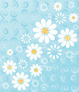 Daisies on Blue Stock Photography