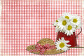 Daisies on Gingham Stock Photo