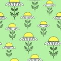 Daisies on a green background. Suitable as a texture for gift wrapping. Vector illustration