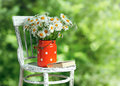Daisies in the old cans on the chair Royalty Free Stock Photo