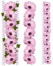 Daisy Borders purple 3 styles