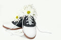 Daisy bouquet in saddle shoe Royalty Free Stock Photo