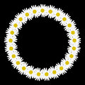 Daisy chain in the shape of a circle frame Royalty Free Stock Photo