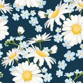 Daisy chamomile and forget-me-not field meadow spring summer flowers seamless pattern on navy blue background.
