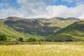 Daisy field mountains blue sky and clouds scenic langdale valley lake district uk with cumbria near old dungeon ghyll england in Royalty Free Stock Images