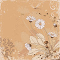 Daisy floral background with flowers Stock Photography