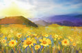 Daisy flower blossom.Oil painting of a rural sunset landscape with a golden daisy field. Royalty Free Stock Photo