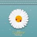 Daisy flower. Chamomile. Best Summer holidays