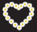 Daisy flower letter vector illustration of the lette Stock Photography