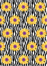 Daisy flower zebra pattern stripes background in yellow and black and white Royalty Free Stock Photos