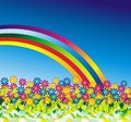 Daisy Flowers Rainbow Background Stock Foto