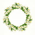 Daisy flowers round frame