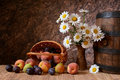 Daisy flowers in a vase with fresh fruits in a vicker basket on wodden table Stock Images