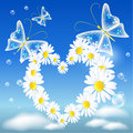Daisy heart and butterflies Royalty Free Stock Photo