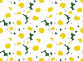 Daisy seamless vector floral texture Royalty Free Stock Images