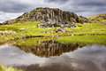 Dale Head Tarn Royalty Free Stock Photography