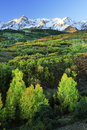 Dallas divide uncompahgre national forest colorado usa Royalty Free Stock Photography