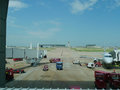 Dallas Fort Worth Airport, American Airlines and various trucks from viewing window. Royalty Free Stock Photo