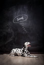 Dalmatian dog dreaming about a bone on black in thought bubble Stock Photo