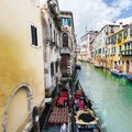 Damage from dampness in Venice Royalty Free Stock Photo