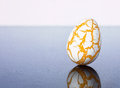 Damaged egg with cracks laying on a mirror plate show that eggs can be unhealthy Royalty Free Stock Photos