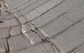 Damaged roofing felt Royalty Free Stock Photo