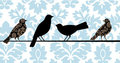 Damask Birds Blue Stock Photography