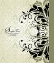 Damask invitation card Stock Image