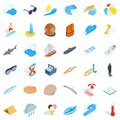 Dampness icons set, isometric style Royalty Free Stock Photo
