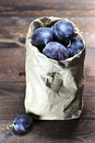 Damson plums Royalty Free Stock Photo