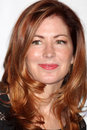 Dana Delany arrives at the JDRF's 9th Annual Gala Stock Photography