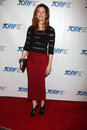 Dana Delany arrives at the JDRF's 9th Annual Gala Stock Images