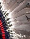 Tanec kostým perie