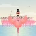 Dance love flamingos