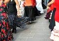 Dancers expert and spanish dance with elegant period costumes flamenco Royalty Free Stock Photos