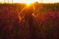 Dancing beautiful girl on field, sun backlight,  sunrise Royalty Free Stock Photo