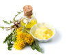 Dandelion flowers with tincture and salve Royalty Free Stock Photo