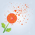 Dandelion with hearts blown away by wind red on blue sky background Royalty Free Stock Photos
